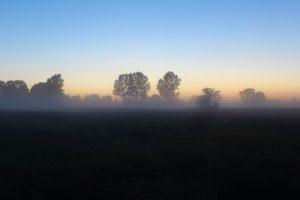 15-06-11 Nebel 03
